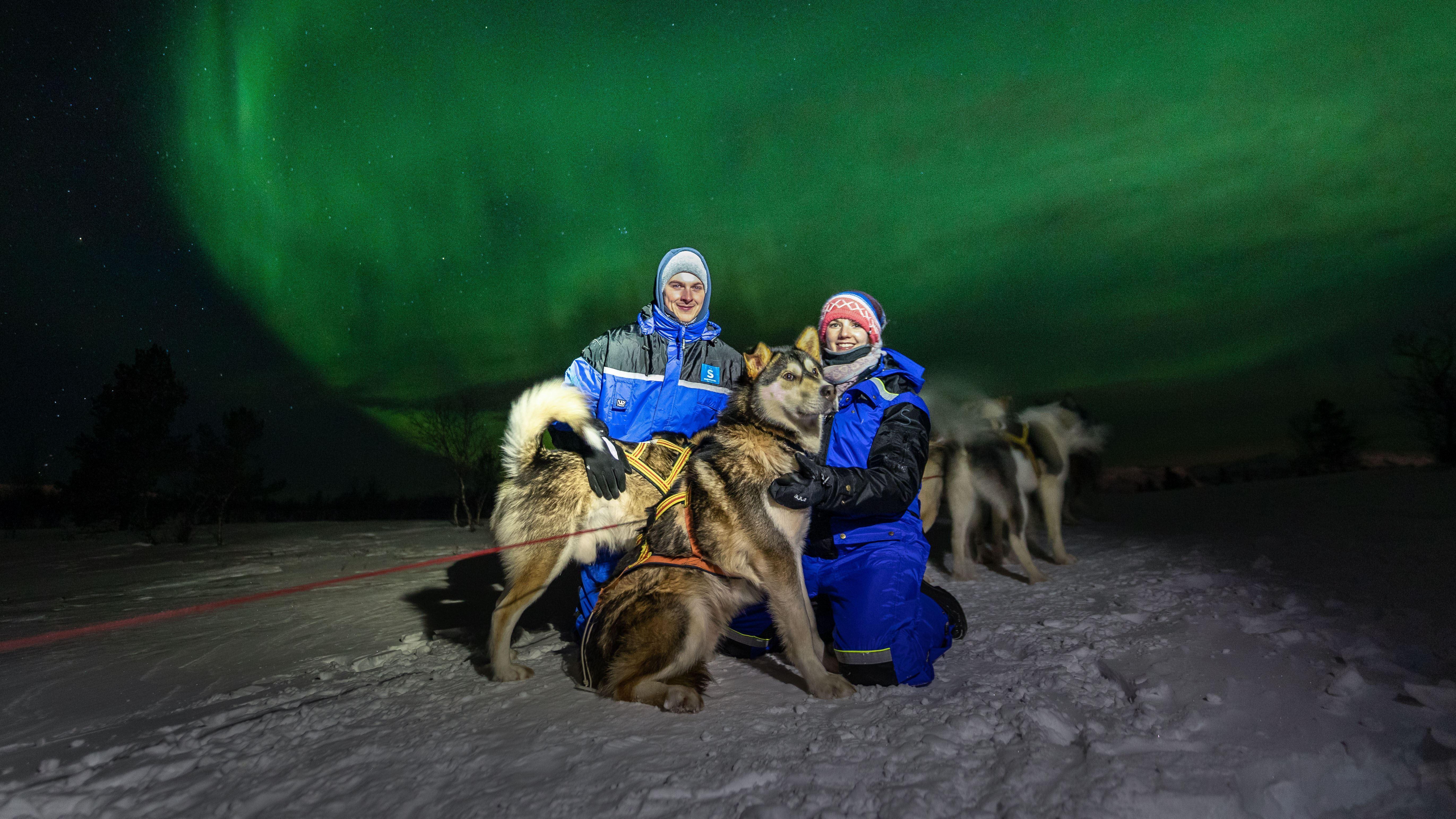 En nordlystur med hundeslede i Kirkenes
